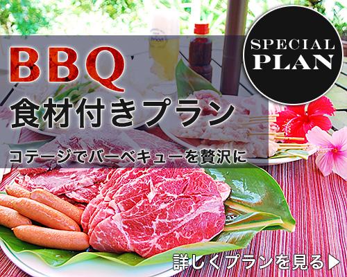 BBQ食材付き 沖縄宿泊コテージ宇宙