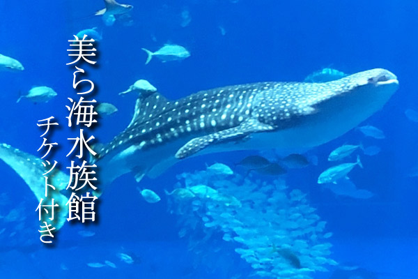 コテージ宙美ら海水族館チケット付きプラン